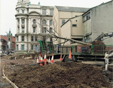 John Duncan, College Square East, from the series Trees from Germany, 2003